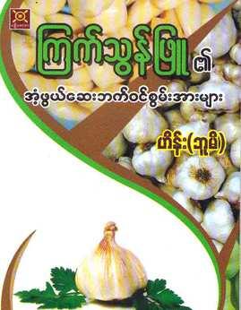 ၾကက္သြန္ျဖဴ၏အံ့ဖြယ္ေဆးဖက္၀င္စြမ္းအားမ်ား - ဟိန္း(ဘူမိ)