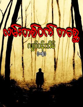 လမ္းတစ္ဝက္တေစၦ - လ်ွပ္ပန္းအိမ္(လားရွိုး)
