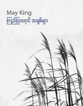 ၾကည္ျပာေရာင္အခ်စ္မ်ား - MayKing